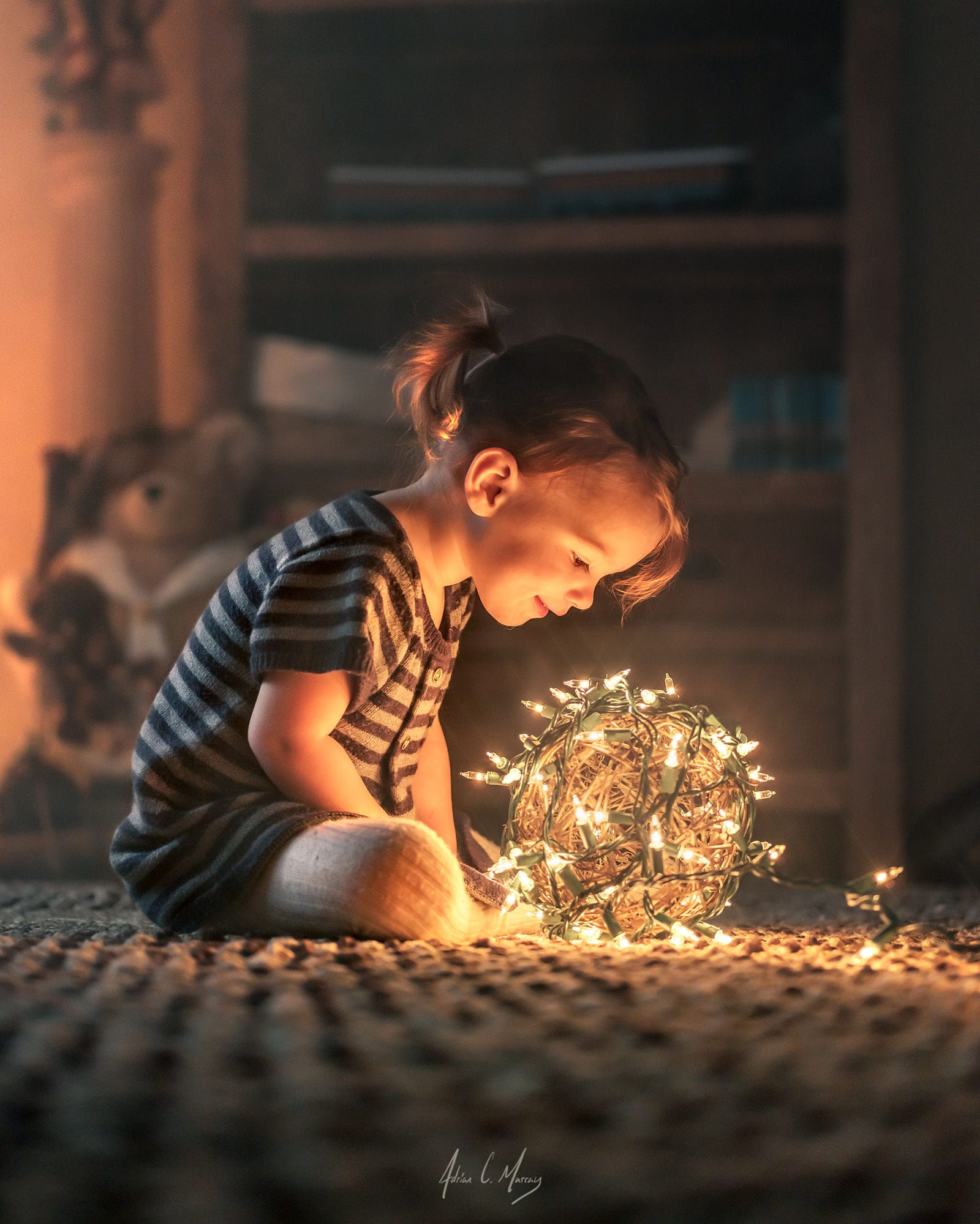 Photo of Holiday lights by Adrian C. Murray