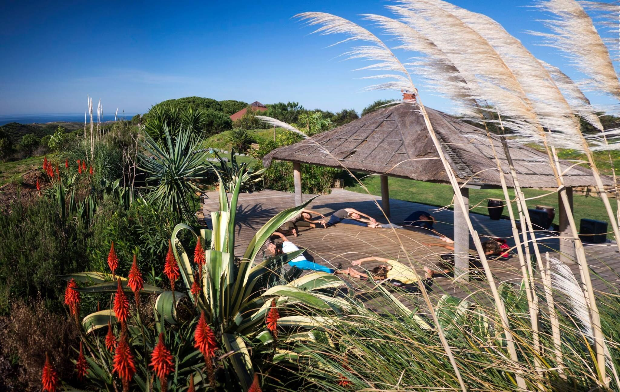 Spring time, the energising season, Nature's way of saying 'let's do it'! Get into the healthy path with our Yoga & Nutrition Getaway, 19th-22nd of May! info@montevelhoecoretreats.com