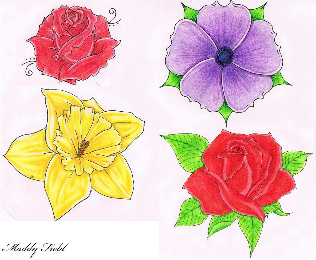 Drawing Images Of Flowers drawings of flowers - ...