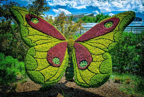 mariposa   Park Designs   Pinterest   Topiary and Gardens