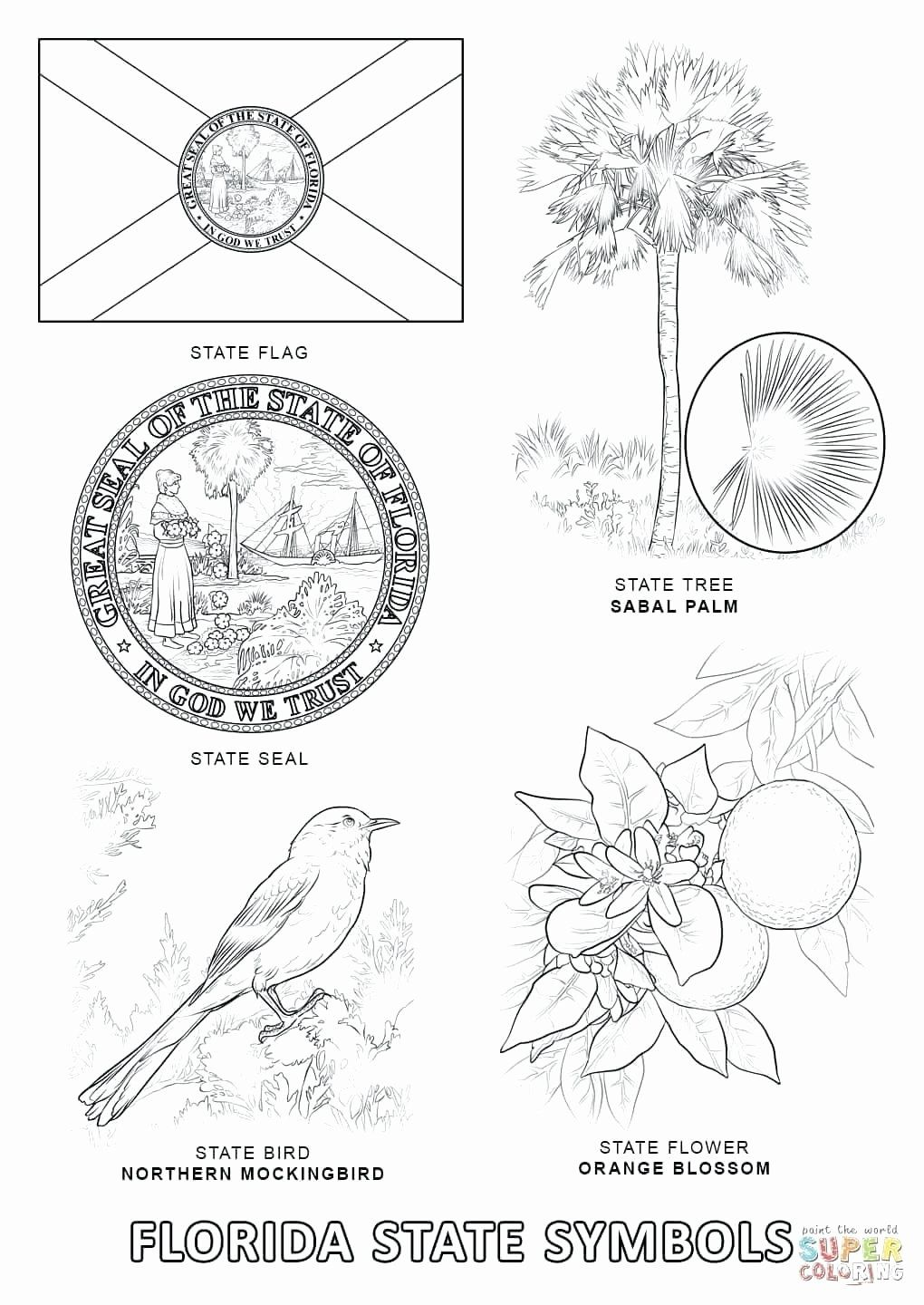 Iowa State Flag Coloring Page Beautiful Virginia State Flag