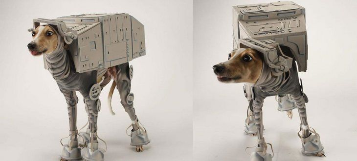 20 accesorios para mascotas que todo friki debería tener en su casa - http://dominiomundial.com/20-accesorios-para-mascotas-que-todo-friki-deberia-tener-en-su-casa/