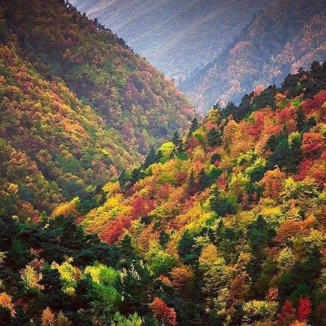 Qabala In Autumn Cool Places To Visit Natural Landmarks Places To Visit