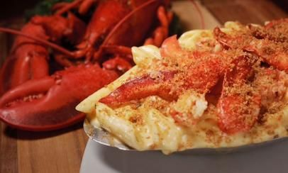 Top Rated Seafood Restaurants In St Augustine Fl Our First