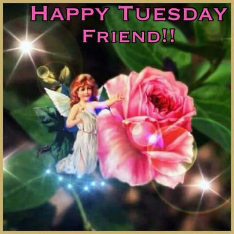 Happy Tuesday Friend Pictures, Photos, and Images for