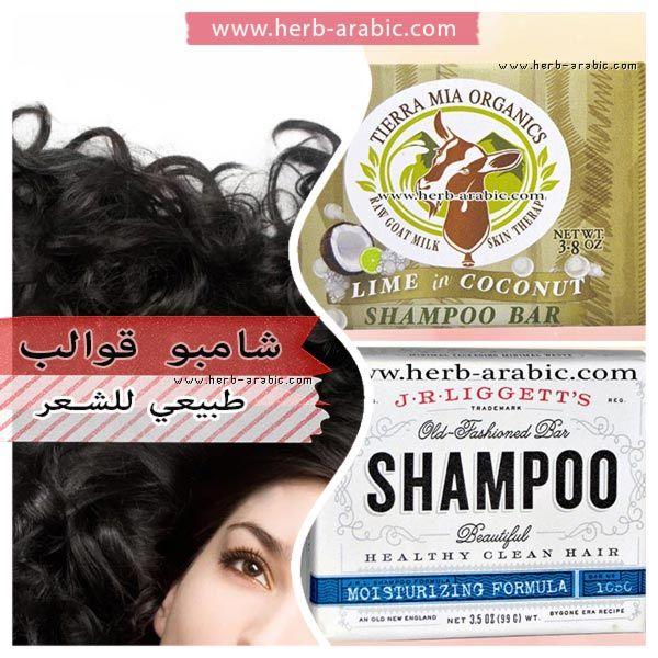 افضل شامبو قوالب للشعر طبيعي في اي هيرب Coconut Shampoo Shampoo Bar Shampoo