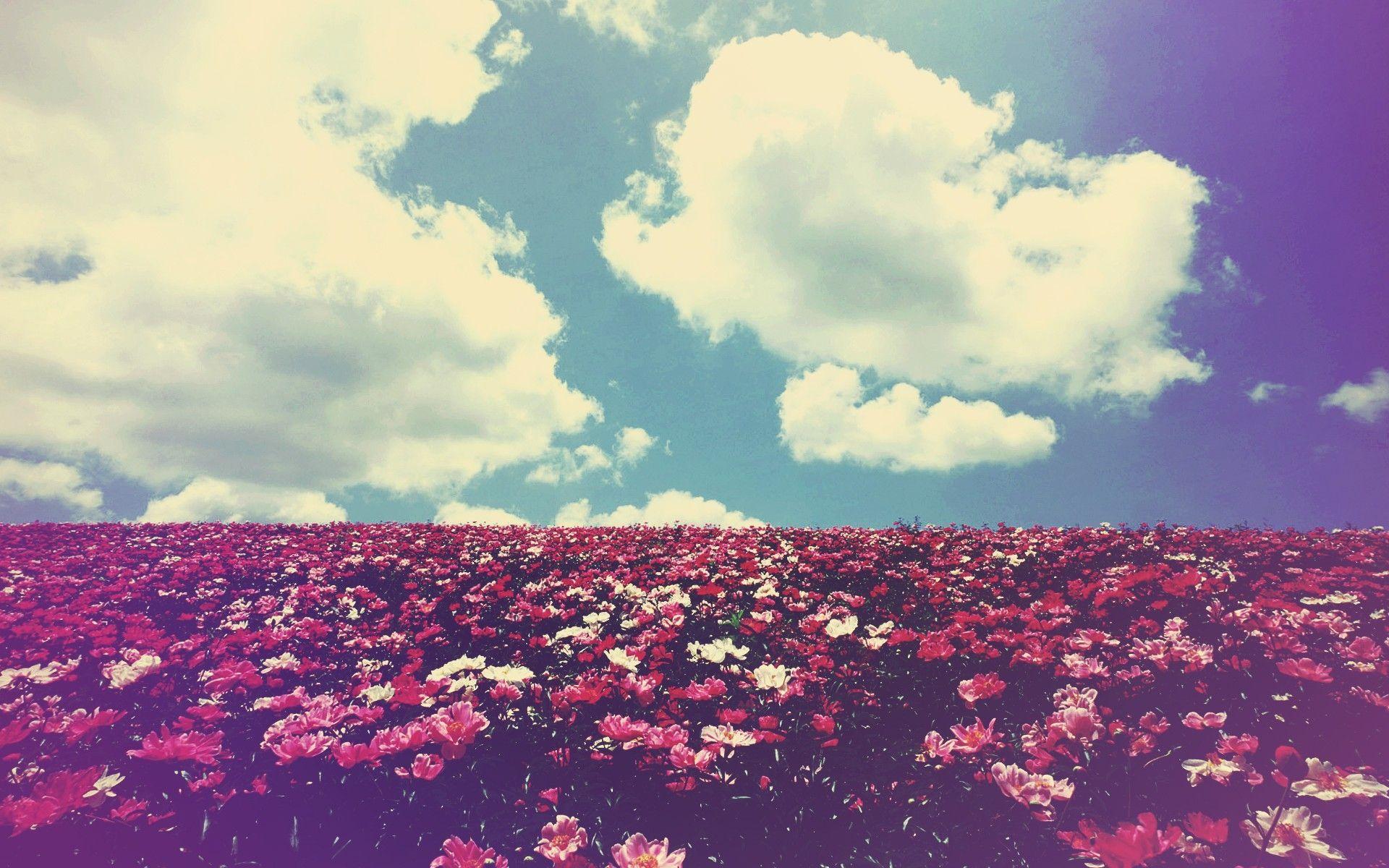 We heart it wallpaper - Free Wallpaper Of Love We Heart It Download New Wallpaper Of Love We Heart It