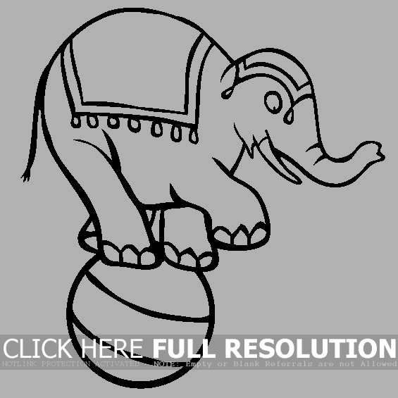 Circus Elephant Standing On Ball coloring picture for kids ...