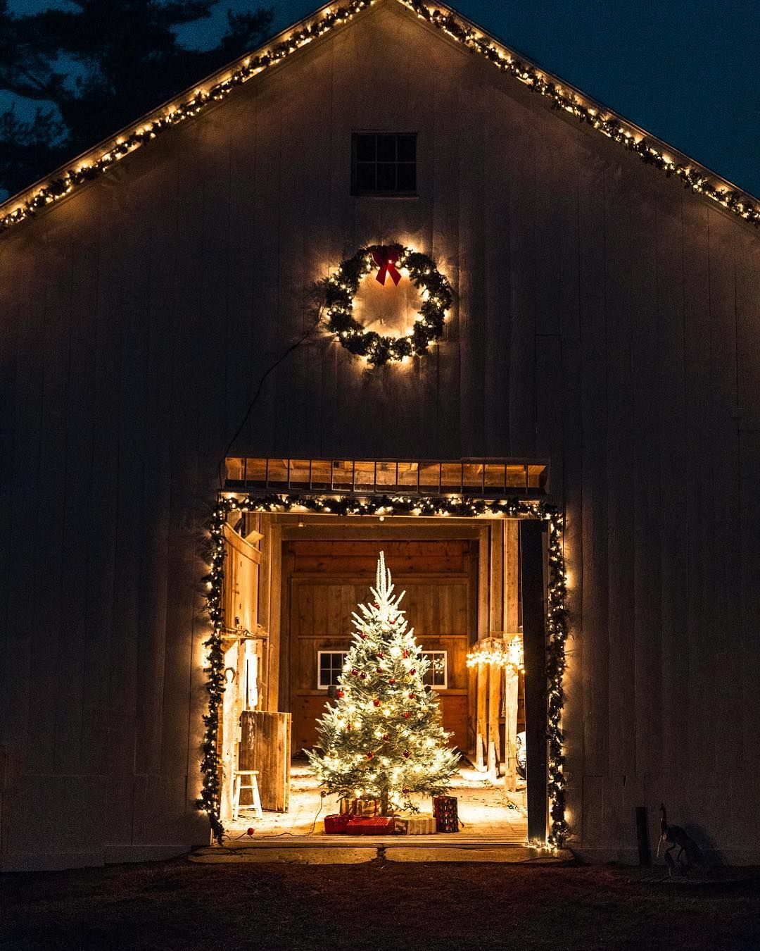 Image May Contain Indoor Christmas Lights Diy Christmas Lights Outdoor Christmas Lights