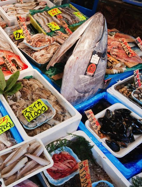 These Famous Fish Markets Are A Seafood Lovers Paradise Hering