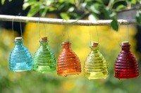 Hoe maak ik een wespenval http://www.hoedoe.nl/natuur-milieu/achtertuin/hoe-maak-ik-een-wespenval