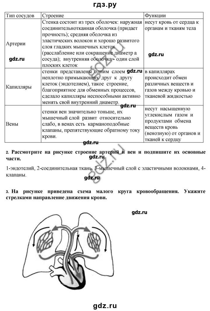 Физика 9 класс лабораторная работа 7 божинова бондаренко евлахова