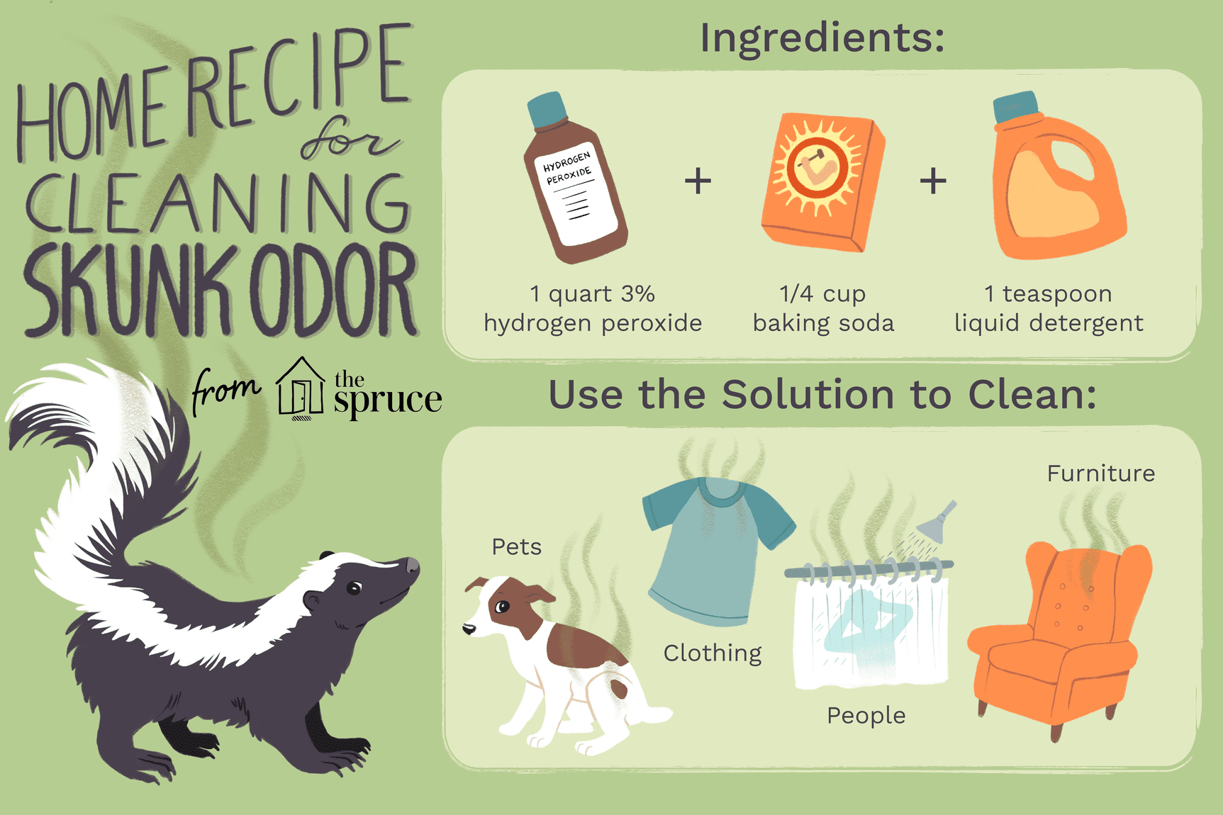 Get Rid of Skunk Odor: What Really Works | Skunk smell ...