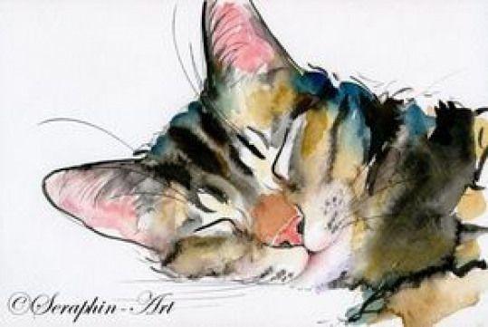 2011 06 190katze Aquarell Zeichnung Watercolorpainting