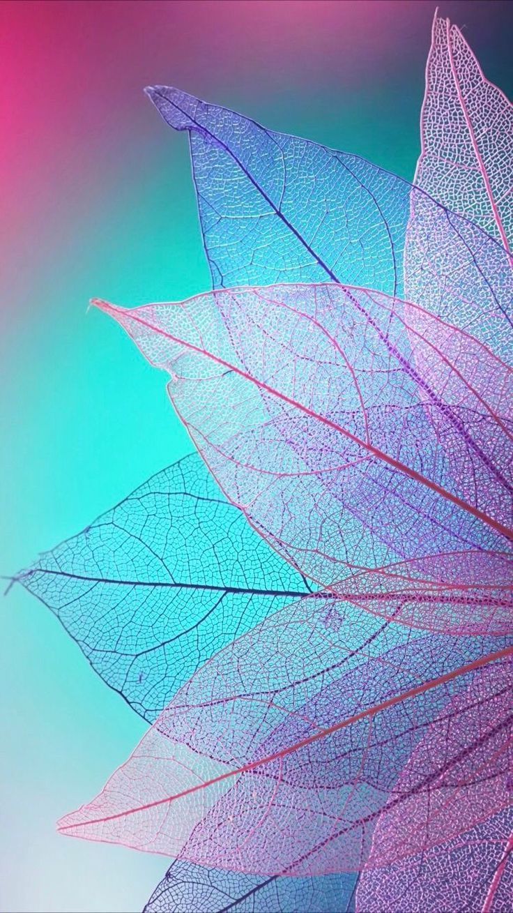 iPhone and Android Wallpapers: Colored Leaves Wallpaper for iPhone and Android -  -