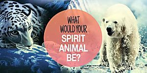 What Would Your Spirit Animal Be?
