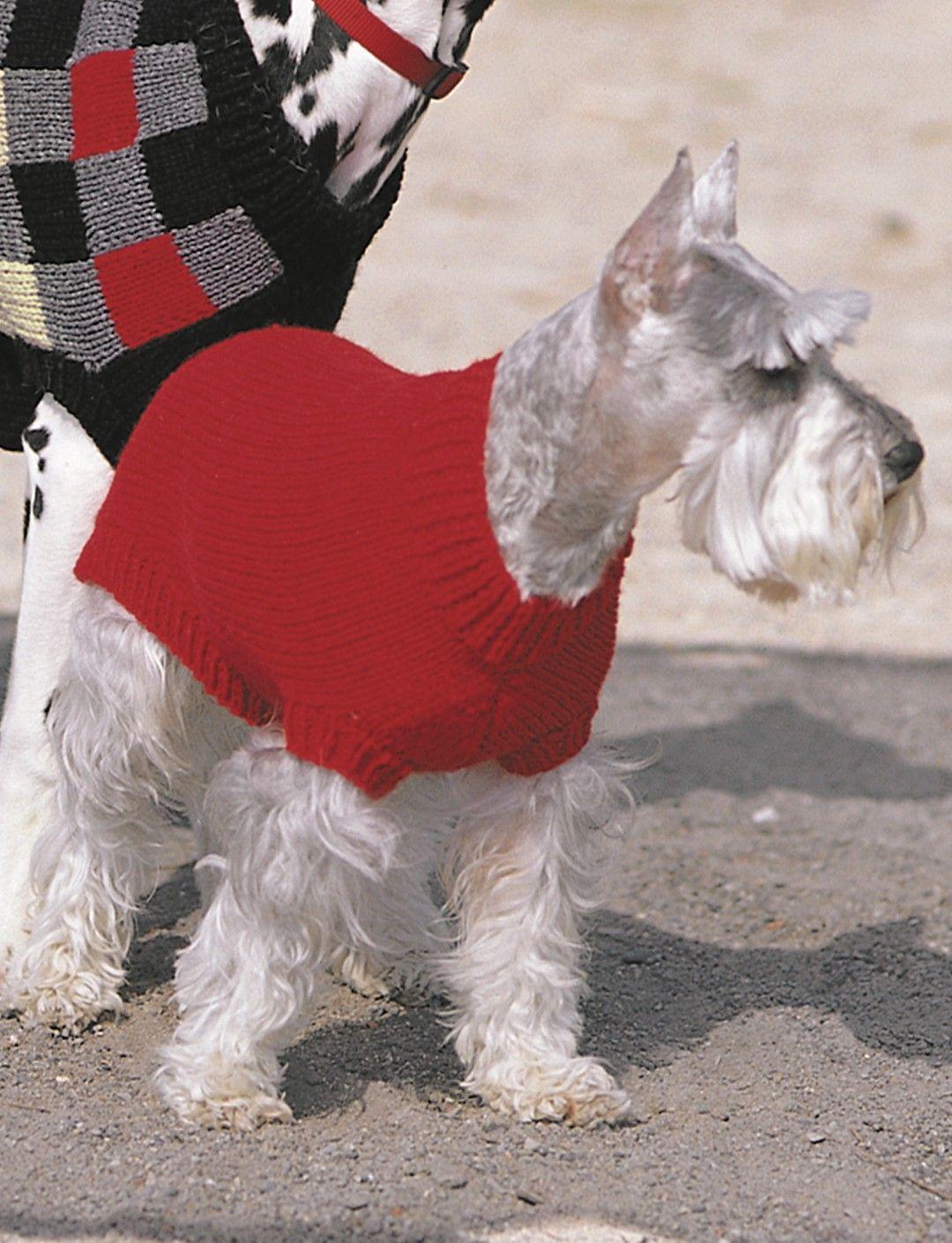 Yarnspirations.com - Patons Basic Coat | Yarnspirations | Dog ...