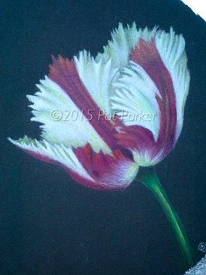 """Interested in doing some beautiful colored pencil projects from home? 16 Lessons - 14 Amazing Teachers! """"Colored Pencil Play Date"""" Follow this link to view the projects and sign up! This beautiful tulip is one of them!   https://www.e-junkie.com/ecom/gb.php?ii=1403757&c=ib&aff=285139&cl=235423"""