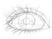 Augen zeichnen für Anfänger | Augen zeichnen, Zeichnen für ...
