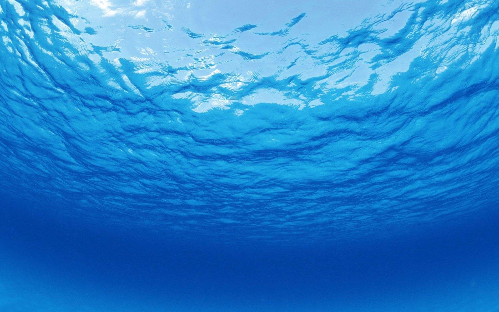 under ocean background wallpaper