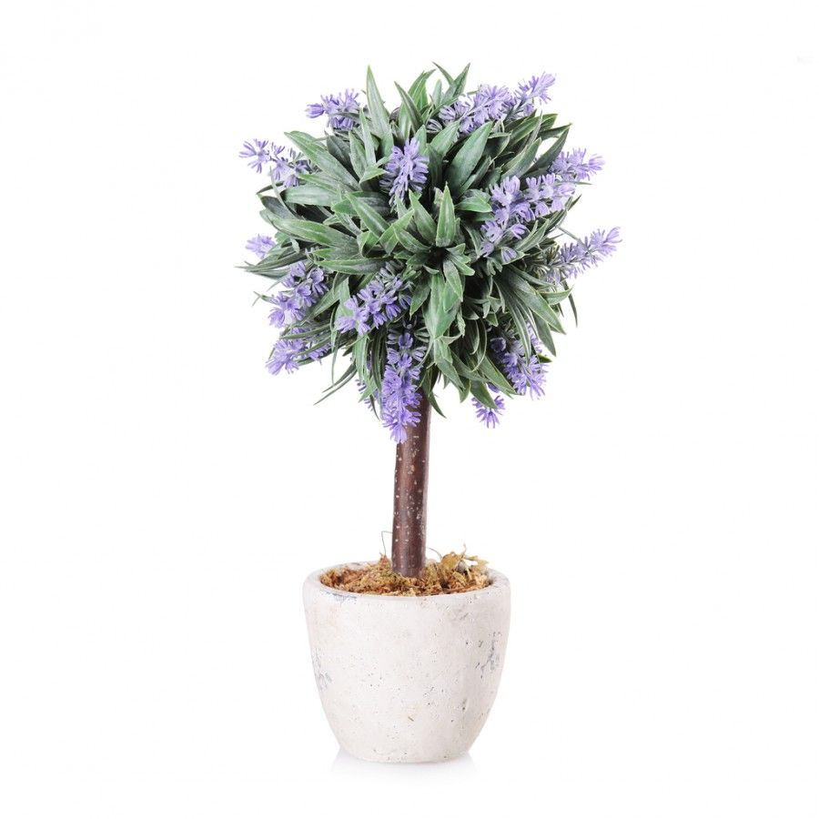 Stroik Lavenda Bush Pot | home-you.com