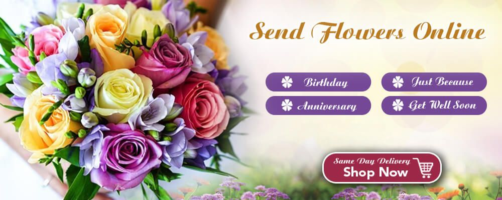Send Flowers Same Day Birthday Flowers Delivery