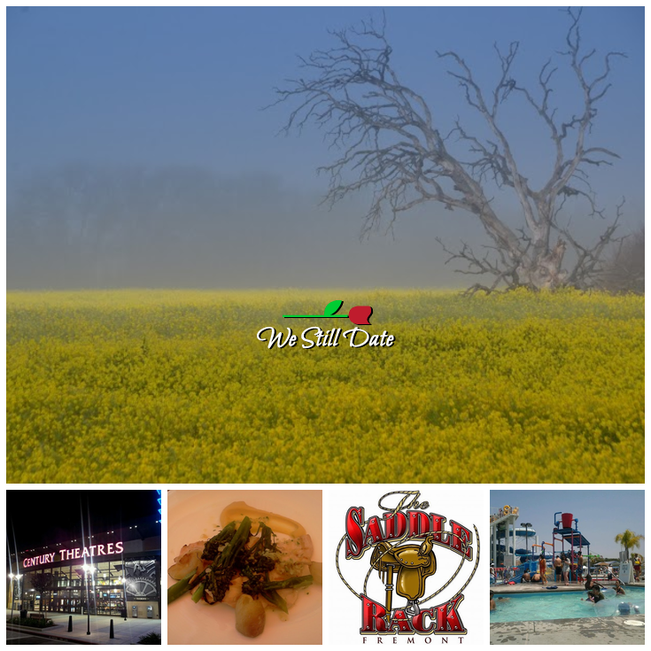 Romantic Things To Do In Fremont Ca Date Ideas In The United