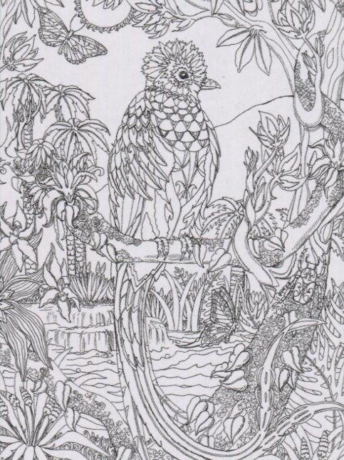 Puzzle Escapes Quetzal 500pc Coloring Jigsaw Puzzle By