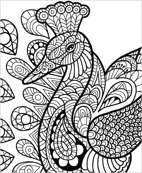 wild animals volume 1 illustrated by terbit basuki birds peacocks pattern coloring pages. Black Bedroom Furniture Sets. Home Design Ideas