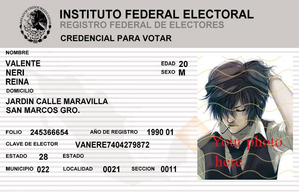 The Federal Electoral Institute (Spanish: Instituto Federal ...