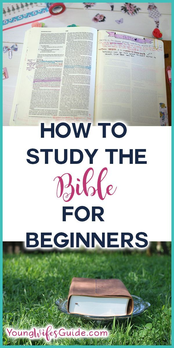 How to study the Bible for beginners – Hf #86