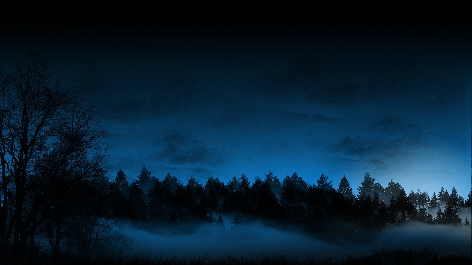 Dark Forest Cloud Cold Fog Night Dark Landscape Winter Wallpaper Bosque De Noche Paisajes Bosque