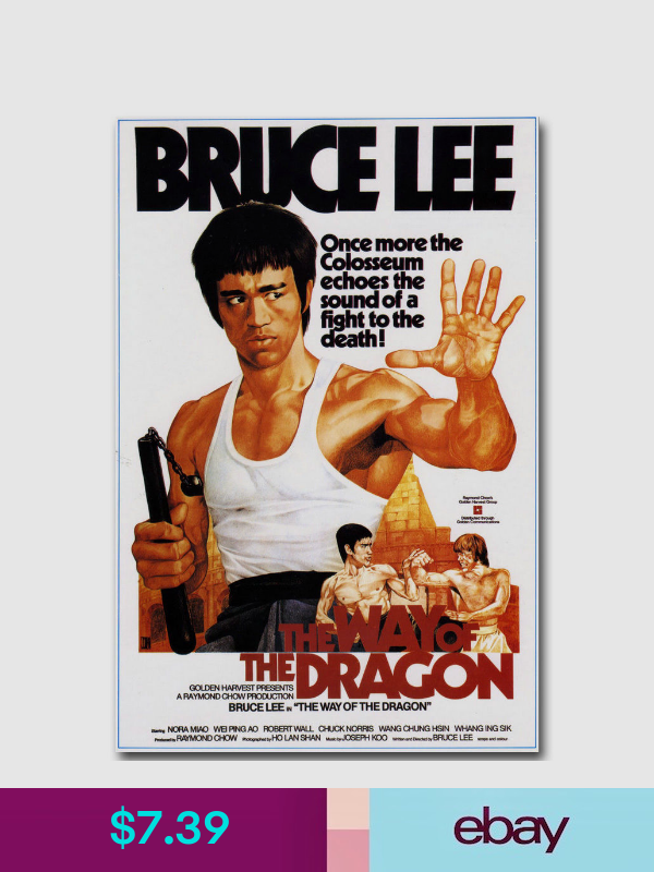 Bruce LEE Enter the Dragon Classic Movie Canvas Poster Art Prints 8x12 24x36inch