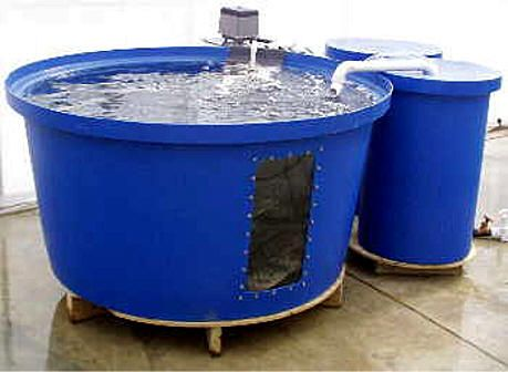 Aquaculture System Is An Easy Way To Get Started In Fish