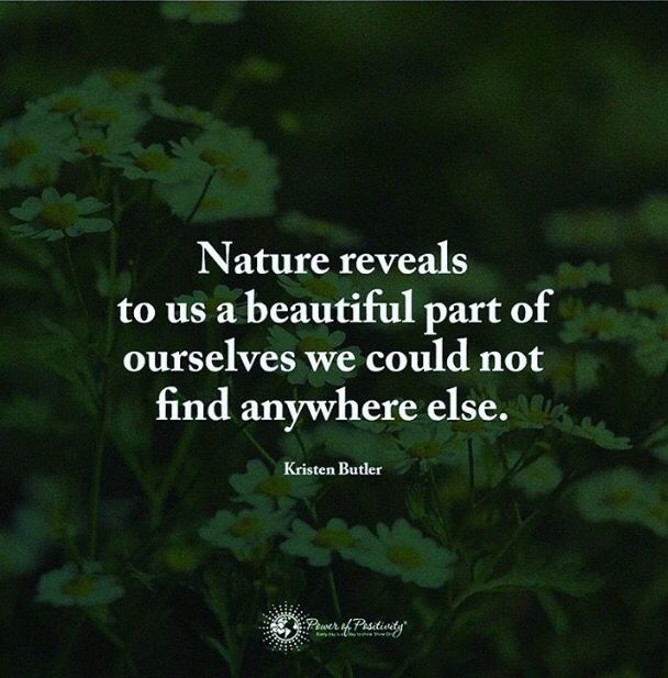 Love Of Nature Quotes Love Nature Quotes Mother Nature Quotes Nature Quotes Beautiful