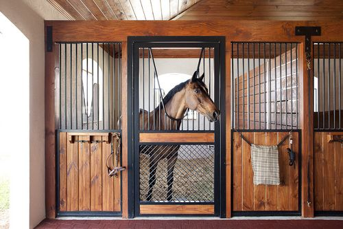 Horse Stall Design Ideas 20 stall arena horse barn design plan awesome idea to combine indoor arena Lucas Equine Horse Stall With Understated Sides And A Bold Door This Is My Dream Stall Design