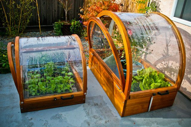 Small Greenhouse Kits Cold Frame Garden Pinterest