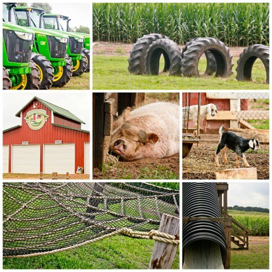 Giveaway The One Farm To Put On Your Don T Miss List This Fall