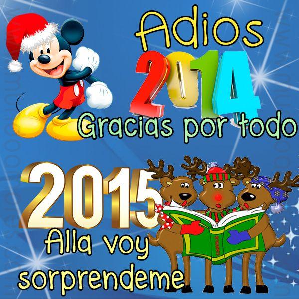 Adiós 2014