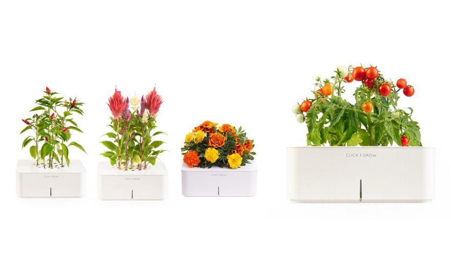 Click and Grow Smartpot - Η γλάστρα που τα κάνει όλα μόνη της