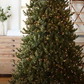 Shasta Fir Artificial Christmas Tree From Balsam Hill