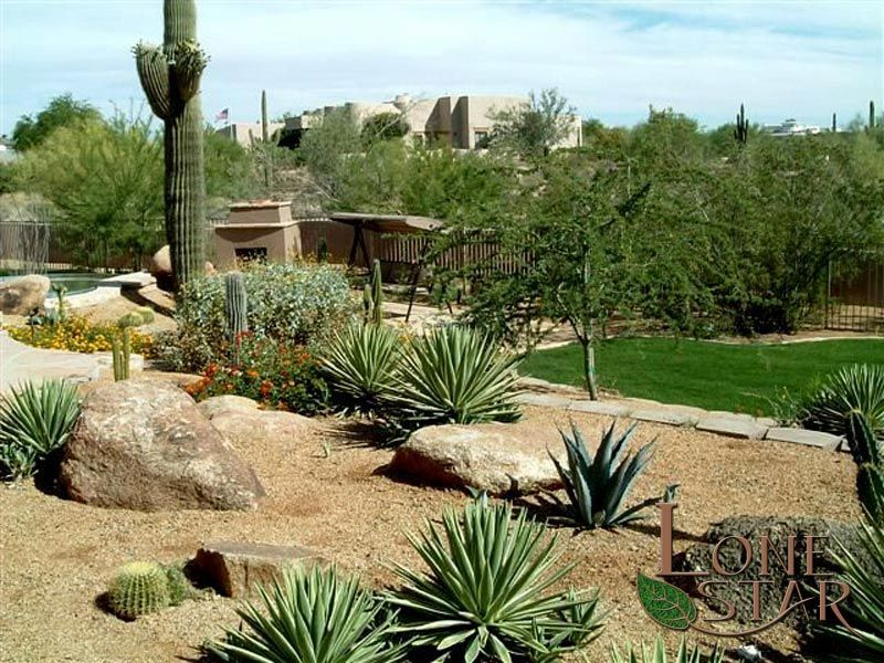 A Desert Landscape With Agaves And 0 Saguaro Looking Down To A Fireplace In  Scottsdale,