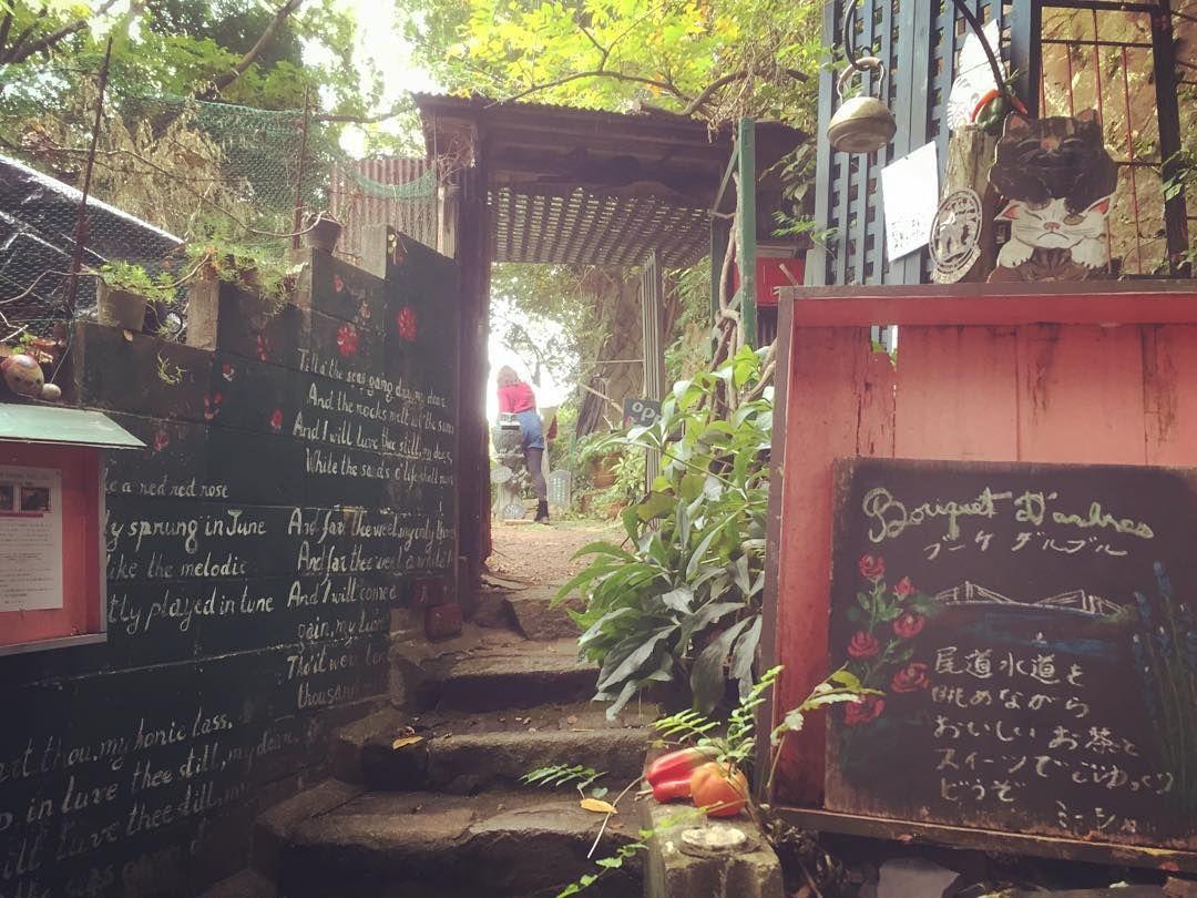 日本一癒されるカフェ!広島・尾道でジブリのような森カフェをみつけた | RETRIP[リトリップ]