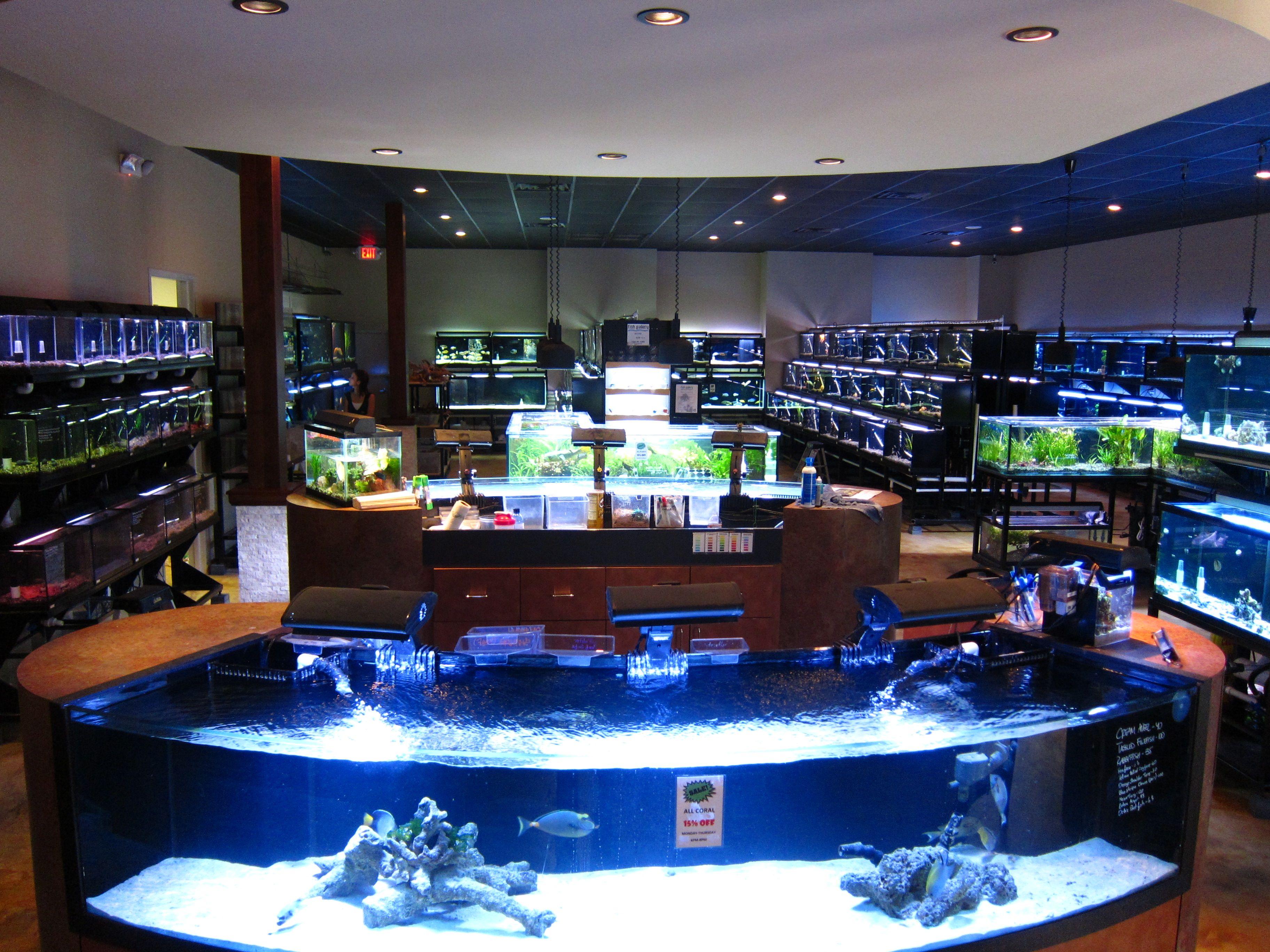 Plan your visit to the houston aquarium fish room maybe for Aquarium shop