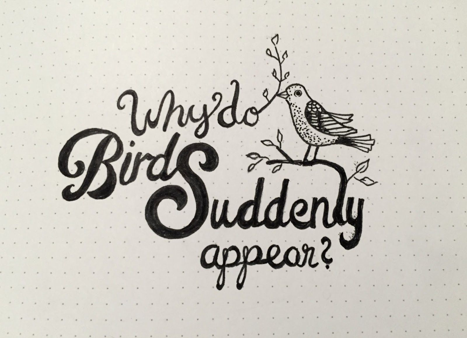 Why do birds suddenly appear