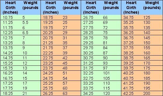 measurements weight chart