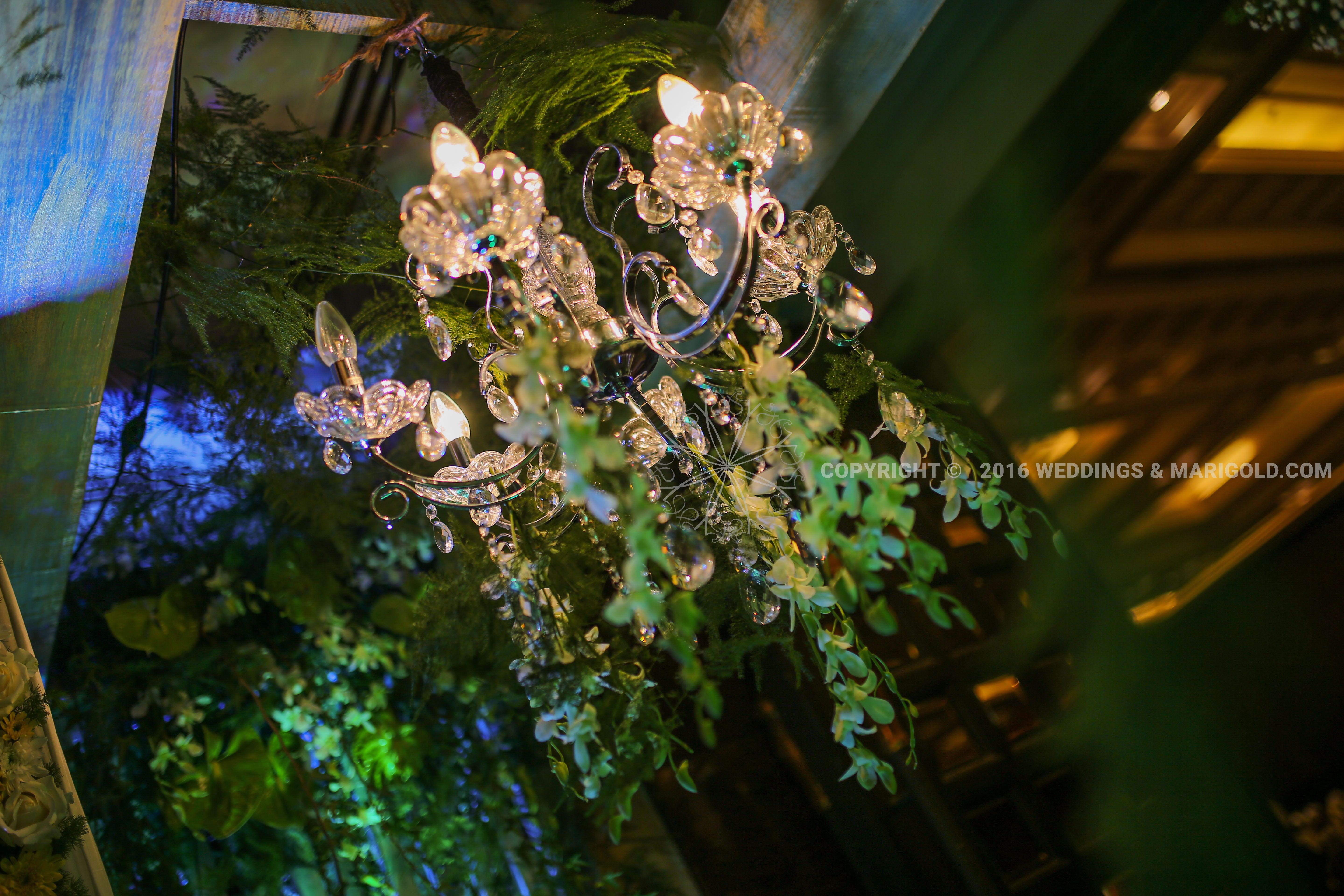Chandelier detail with hanging green orchid strands