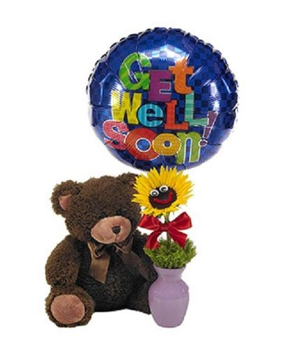 You Are My Sunshine A Plush Teddy Bear With A Sunflower Smile Face And A Balloon Get Well Flowers Get Well Gifts Get Well Balloons