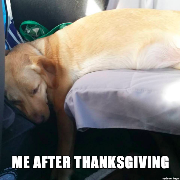 Me After Thanksgiving - Meme on Imgur