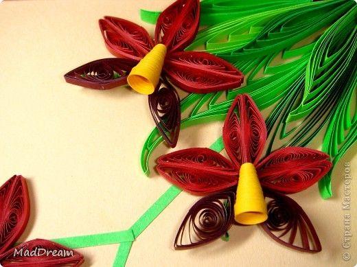 Картина, панно Квиллинг: Квиллинг: Выставка орхидей =) Бумажные полосы. Фото 1